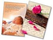 Postkarten-Paket Phil Bosmans