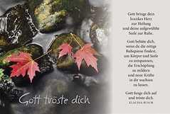 Faltkarte: Gott bringe dein krankes Herz - Trauer